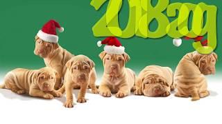 Видео поздравление на новый год 2018 год собаки