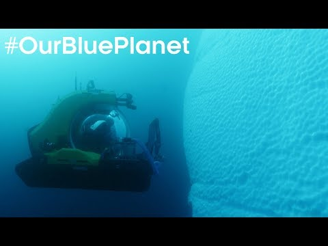 Pioneering Scientist Journeys 1000m Deep In Antarctica #OurBluePlanet | BBC Earth