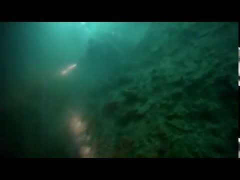 Wreck Dive, SS Margit.  Malta.