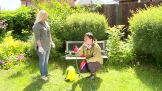 видео Как избавиться от клещей на участке, территории, в саду или огороде