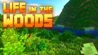 🔨 Minecraft 10 | Mal wieder kein Moos... | Back to Nature | Life in the Woods Gameplay thumbnail
