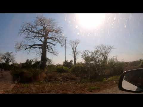 Vlog 12: Goodbye Tofo, Hello Vilanculos!