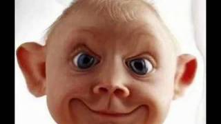 risas de bebe remix