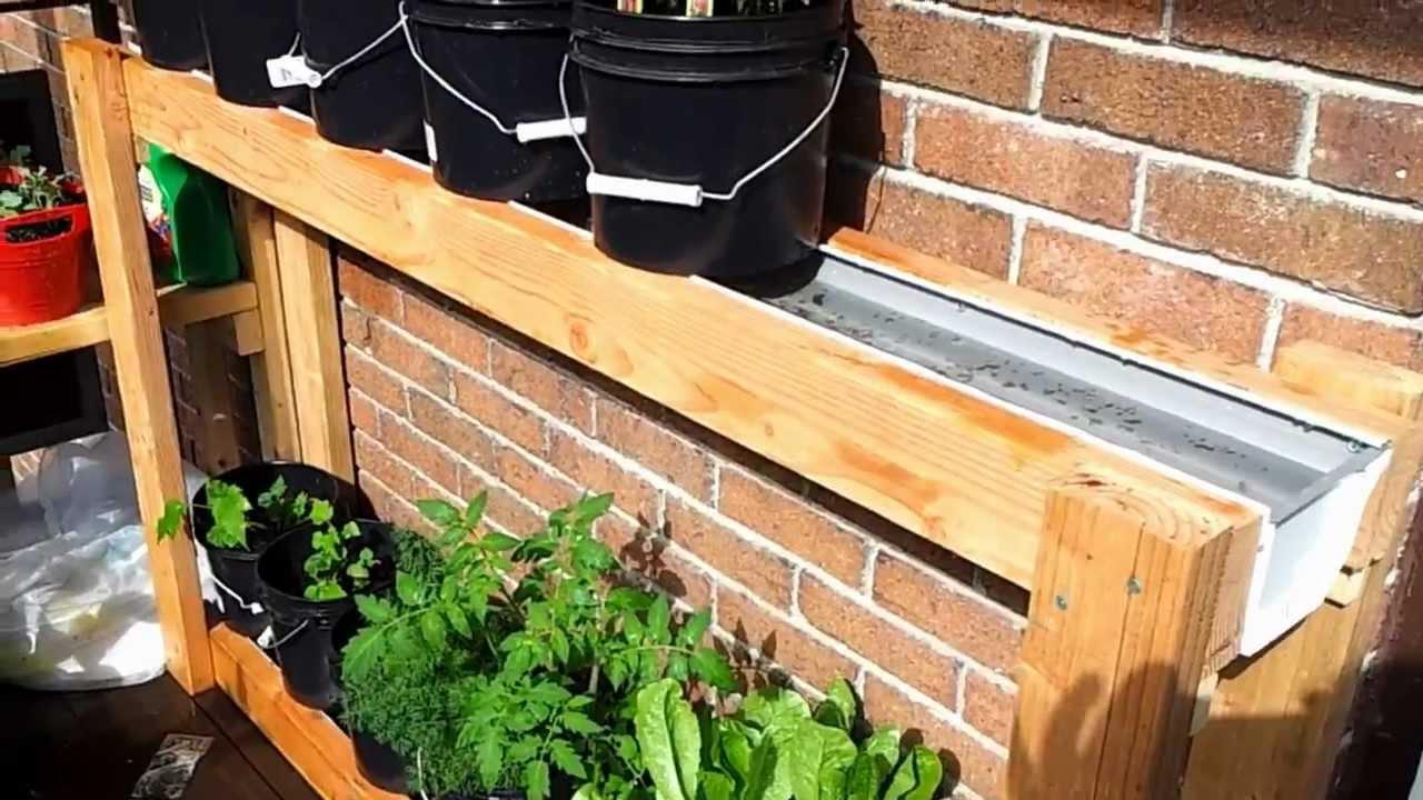 Balcony Garden My Balcony Garden Youtube