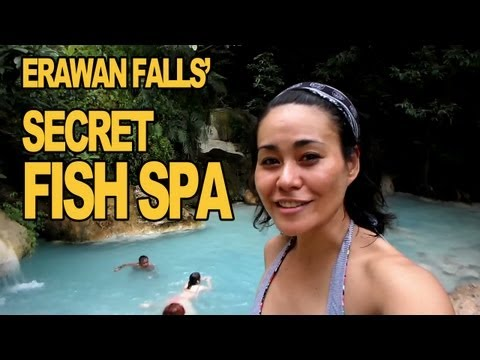 Erawan Falls and Secret Fish Spas , Kanchanaburi, Thailand (P2)