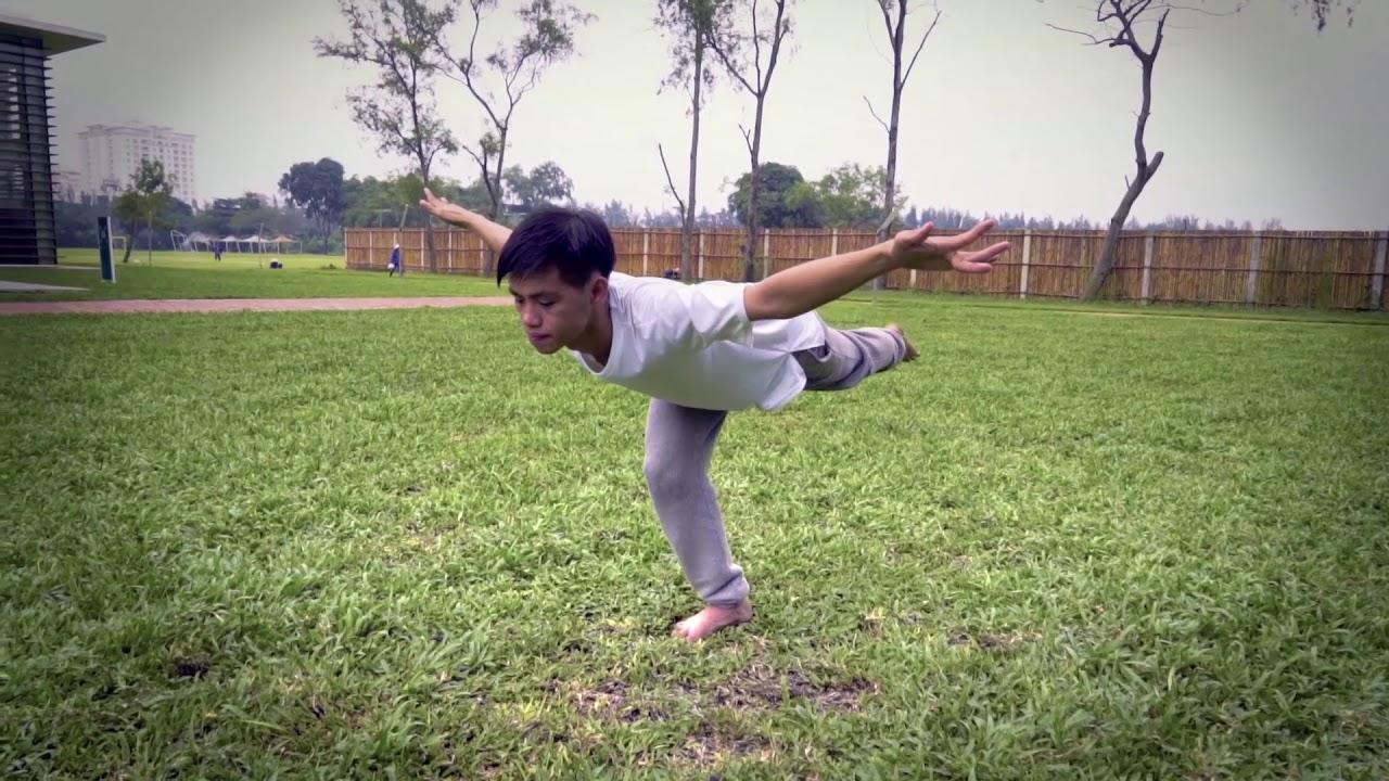 Crane Qigong for Fire-Heart and Joy – White Tiger Qigong