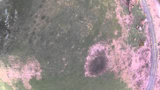 AR Drone 2.0 - GoPro Aerial of Gunda and her Frisbee