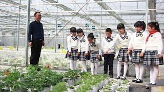Lüwochuan Farm's success story - China (English subtitles)