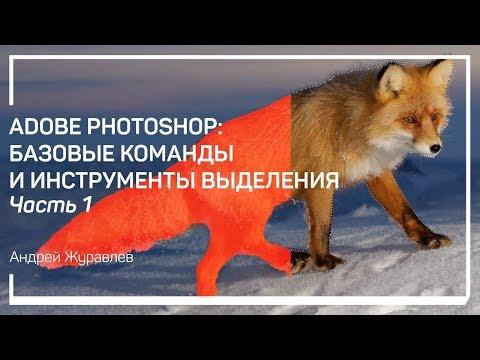Выделение и маска. Adobe Photoshop: базовые команды и инструменты выделения. Андрей Журавлев