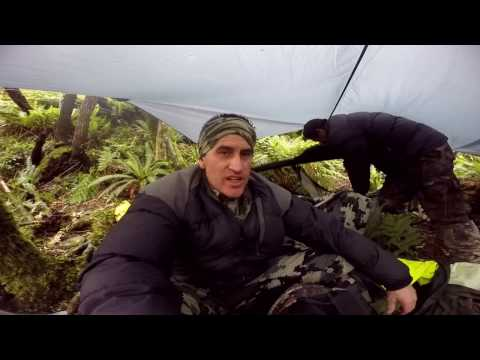 RED DEER ROAR 2017 NZ