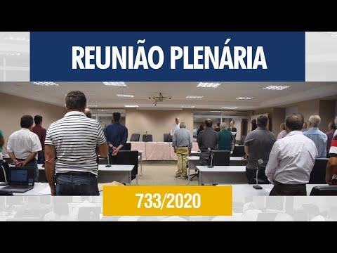 733ª Reunião Plenária - Crea-AL