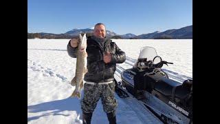 Зимняя рыбалка на чудесных озёрах 2 Нашли крупного окуня Ловим щуку на жерлицы Супер отдых