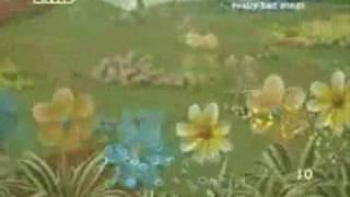 Cotton Eyed Joe - Teletubbies dance!