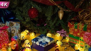 Wonderful Gifts Under The Christmas Tree | Stock Footage