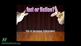 Je destilovaný rybí olej bez toxinů?