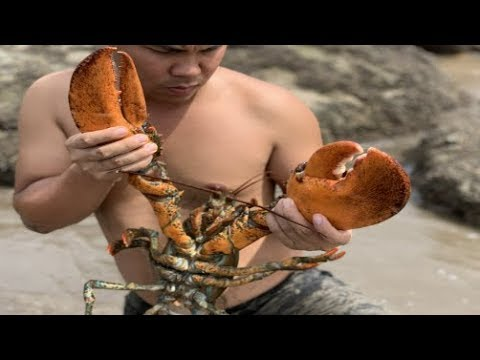 Survival Skills Catch Giant Lobsters On The Wild Beach And Cooking Food In The Primitive Way