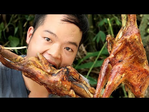 Primitive Skills: Wild chicken trap in the forest and delicious grilling