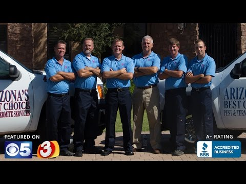 Phoenix Pest Control & Termite Treatments | Arizona Best Choice Pest & Termite Services