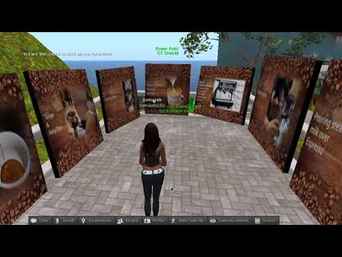 Virtual World Training Cafe in Second Life