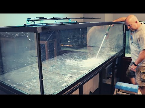 Huge Aquarium Ready For Fish!! Custom Aquarium Set Up And Start Up!