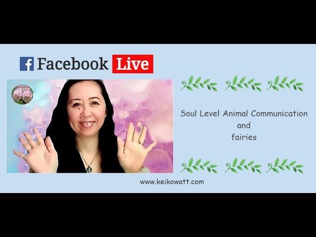 My first Facebook Live
