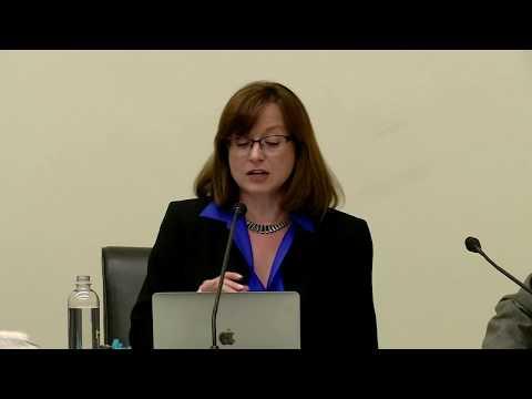 Maria Werlau - THREATS TO THE U.S. IN THE WESTERN HEMISPHERE - Panel Political Perspective