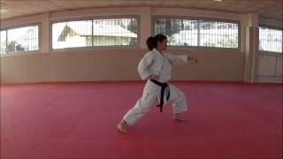 Heian Shodan Karate Training Sonia Fiuza