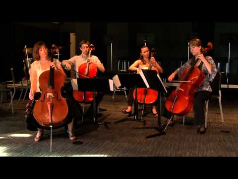 Dr. Ashley Sandor Sidon, Briggs Endowed Professor of Cello at Drake University