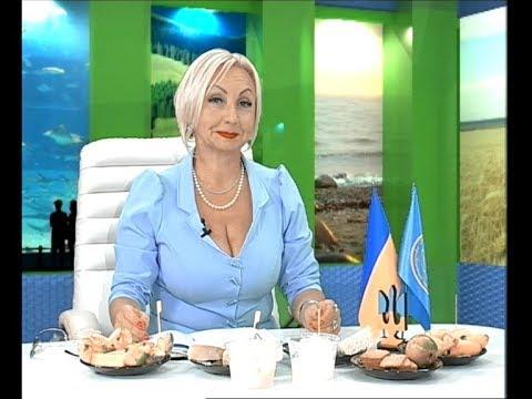 Медиа Информ: Плюс и минус с Ольгой Бабаянц. (17 10 17) Вороге Бог послал... кусочек сыра?
