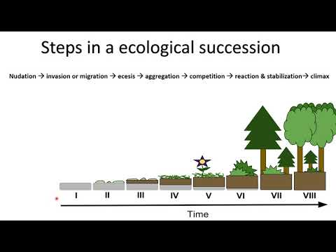 ECOLOGICAL SUCCESSION | PIONEER SPECIES | CLIMAX COMMUNITY |HYDROSERE