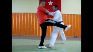 8-Bazı durumlarda  taktik çalışmaları (Taekwondo Antrenörlük Kursu Dr. Şakir Bezci)