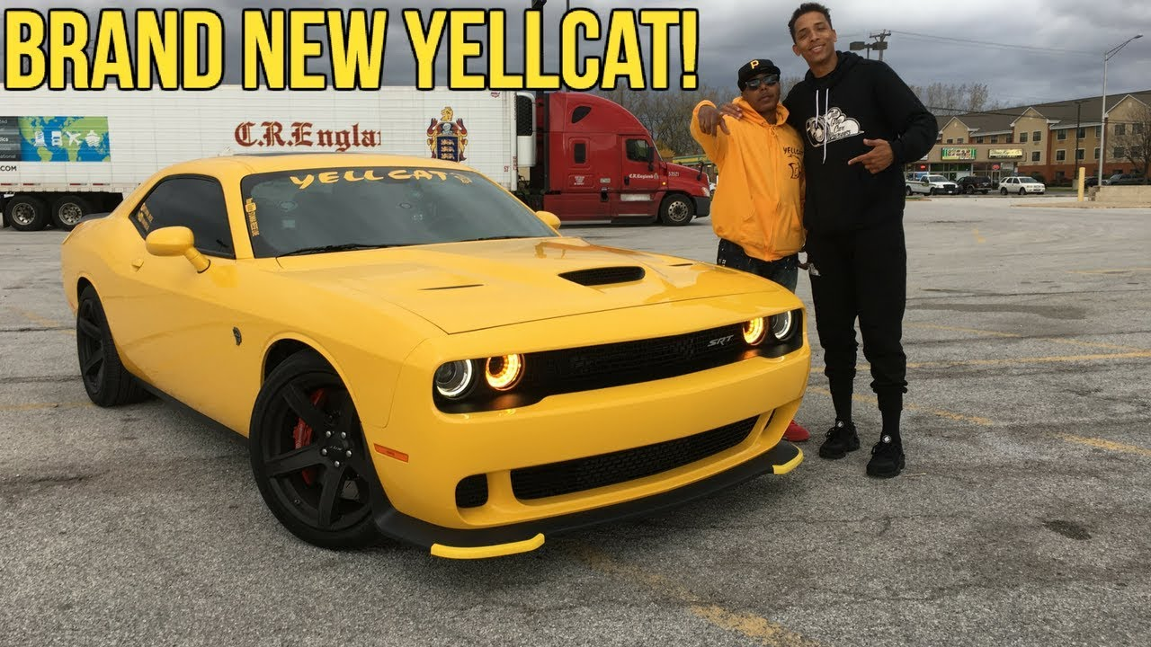 Reviewing Stunna Reese Live BRAND NEW Yellcat