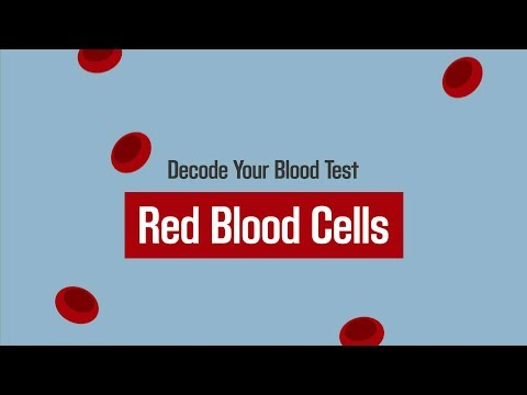 Decode Your Blood Test: Red Blood Cells 💉 | Merck Manual Consumer Version