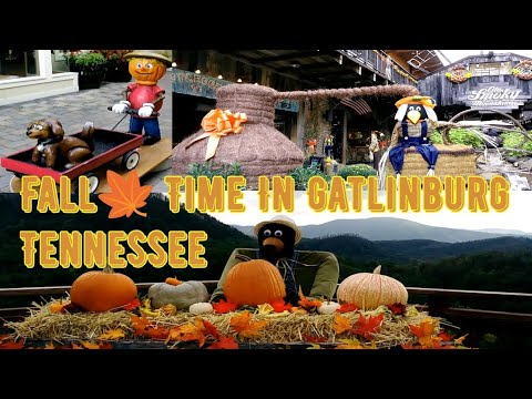Fall Time in Gatlinburg Tennessee