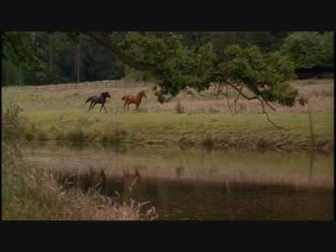 Anna Sewell - Black Beauty 2 - Die Erpressung