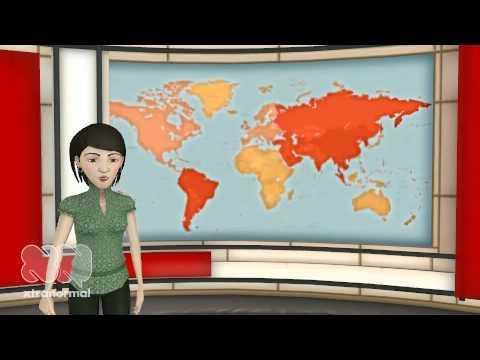 Investigative Journalism the Stacey Dooley Way