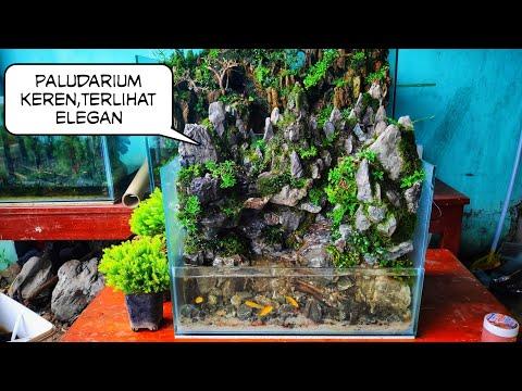 183 Hunting Kayu Aquascape Dipinggir Wadok Youtube