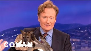 Animal Expert David Mizejewski: Wallaby & Caracal  CONAN on TBS