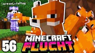 Wir KLAUEN ein paar FÜCHSE! ☆ Minecraft FLUCHT #56