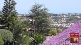 Home James Real Estate - Laguna Niguel, California