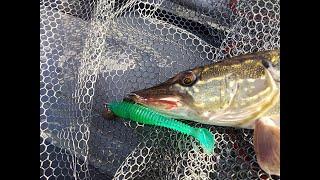 Рыбалка на спиннинг Ловля щуки на джиг Река оживает щука атакует