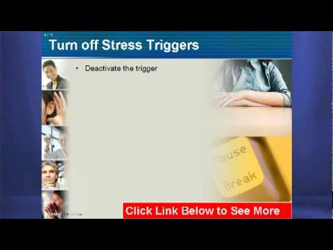 PPT Of Stress Management: Stress Management PPT For Workplace And Employee Training