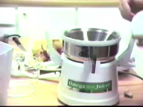 how to make sorbet with omega juicer