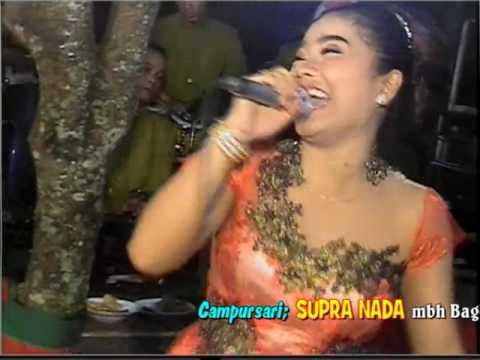 Vivi Voleta Bidadari Keseleo - CS Supra Nada Live Jatimulyo Sambi