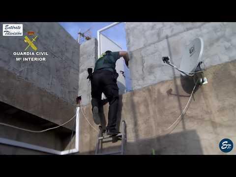 𝚅𝙸𝙳𝙴𝙾 🎥  La Guardia Civil Almería incauta 15.800 plantas de marihuana