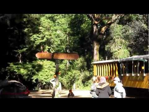 Sonora Roaring Camp n Big Trees, California, US :: Arun Kumar B :: Dec 2011