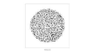 Monkey Safari - Walls (Josh Wink