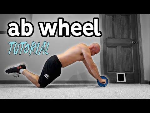 Ab Wheel For Beginners | Rollout Progression and Extra Exercises
