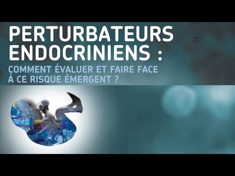 Planète conférences - Perturbateurs endocriniens