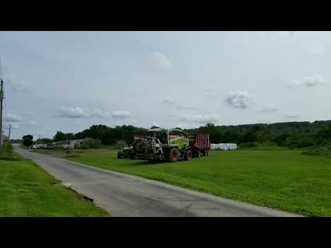 Chopping corn for silage:  Part 2 the farmers wife gets behind the wheel